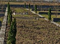 180 متر زمین چسبیده به بافت مسکونی  در شیپور-عکس کوچک