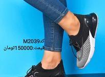 کفش دخترانهNike  در شیپور-عکس کوچک