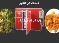 دستگاه خشک کن صنعتی انگور،خشک کن نیمه صنعتی انگور،مویز،تیزاب در شیپور-عکس کوچک