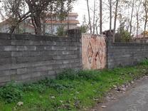فروش زمین مسکونی 418 متر در لاهیجان در شیپور