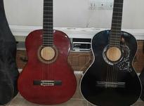 دو عدد گیتار همراه با کیف در شیپور-عکس کوچک