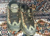 کفش سایز 36 پسر محکم  در شیپور-عکس کوچک