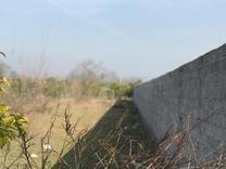 فروش زمین 1000 متر درقادیکلا بزرگ در شیپور
