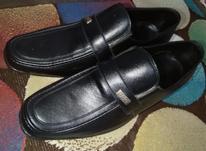 کفش مجلسی در حد نو  در شیپور-عکس کوچک