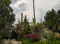 فروش ویلا 800 متر در سلمان شهر در شیپور-عکس کوچک
