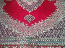فرش 12 متری در شیپور