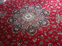 فرش      فوری در شیپور-عکس کوچک