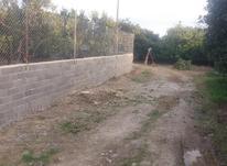 1800متر باغ مرکبات +برق و دور دیوار /جاده دریا در شیپور-عکس کوچک
