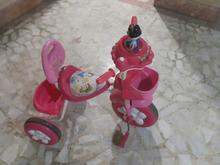سه چرخه دخترانه در شیپور