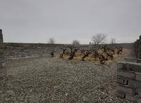 باغچه دنج و زمین 450 متر در رباط کریم در شیپور-عکس کوچک