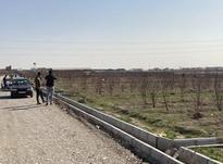 فروش زمین 800 متری دو بر در رباط کریم در شیپور-عکس کوچک