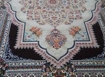 فرش هیوا سلطنتی 12 متری در شیپور-عکس کوچک