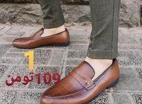 کفش مردانه  در شیپور-عکس کوچک