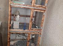 قفس چوبی قدی در شیپور-عکس کوچک