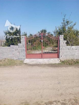 فروش زمین 2400 متر در آمل در گروه خرید و فروش املاک در مازندران در شیپور-عکس3