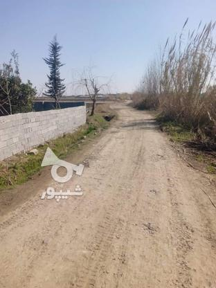 فروش زمین 2400 متر در آمل در گروه خرید و فروش املاک در مازندران در شیپور-عکس1