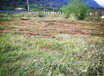 فروش زمین مسکونی 3000 متری در بندپی نوشهر در شیپور-عکس کوچک