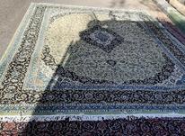 فرش12متری500شانه در شیپور-عکس کوچک