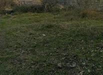 فروش زمین مسکونی 200 متر در سلمان شهر در شیپور-عکس کوچک