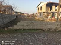 فروش زمین مسکونی 300 متر در رضوانشهر در شیپور-عکس کوچک