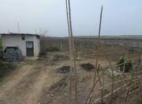 فروش 3پلاک  زمین مسکونی داخل بافت270 متر در آمل در شیپور-عکس کوچک