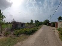 فروش زمین 6600 متر در ابکسر در شیپور-عکس کوچک