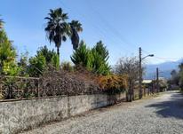 440 متر زمین / نوشهر -درزیکلا -شهرک نیلوفر در شیپور-عکس کوچک