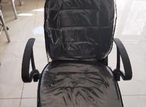 دو عدد صندلی اصلاح  مردانه در شیپور-عکس کوچک