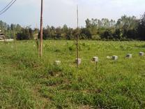 فروش زمین اکازیون 350 متری  در شیپور