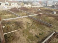 فروش زمین مسکونی 200 متر در متانکلا در شیپور-عکس کوچک