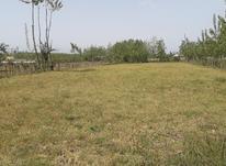 زمین مسکونی 2000 متری روستایی در صومعه سرا در شیپور-عکس کوچک