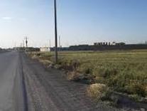 زمین کشاورزی 23000 متری براصلی جاده بابل آمل در شیپور