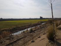 فروش 4000 متر زمین ساحلی سند دار در شیپور