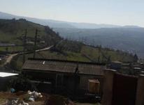 فروش فوق العاده زمین مسکونی 1200 متری در بالاکولا در شیپور-عکس کوچک