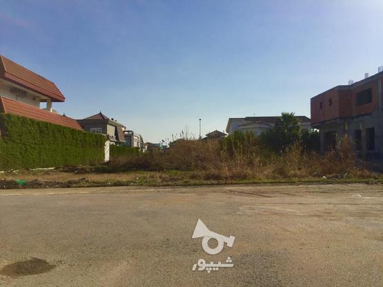 فروش زمین مسکونی 802 متر در خزرشهر جنوبی در گروه خرید و فروش املاک در مازندران در شیپور-عکس1