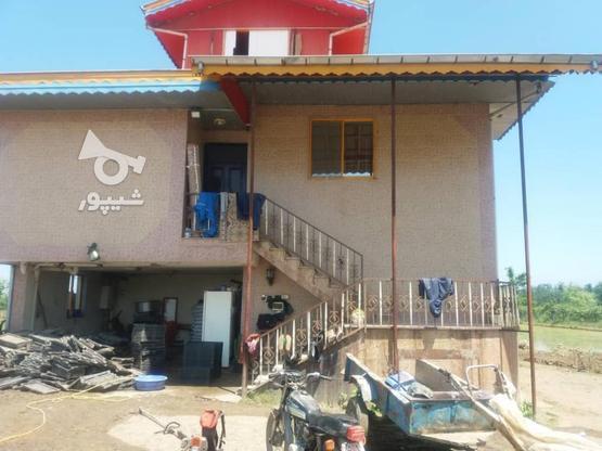 فروش ویلا 20000 متر در رضوانشهر در گروه خرید و فروش املاک در گیلان در شیپور-عکس3