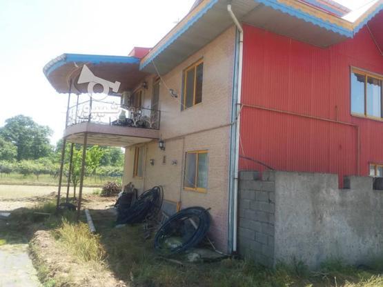 فروش ویلا 20000 متر در رضوانشهر در گروه خرید و فروش املاک در گیلان در شیپور-عکس2