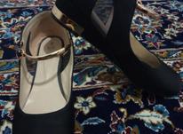 کفش مارک SGS در شیپور-عکس کوچک