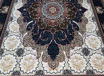 فرش کاف کاشان/فرش لوکس در شیپور-عکس کوچک