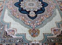 فرش کاف/فرش طرح اعلا/ فرش دوازده متری در شیپور-عکس کوچک