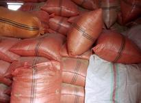 کاه کوبیده داخل خلال آماده  در شیپور-عکس کوچک