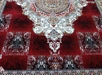 فرش دربار کاشان طرح 700 شانه لاکی نیلوفر 12متری در شیپور-عکس کوچک