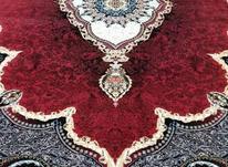 فرش دربار کاشان 9متری لاکی طرح 700 شانه در شیپور-عکس کوچک