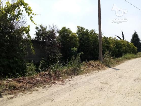 معاوظه زمین با ماشین و فروش در گروه خرید و فروش املاک در مازندران در شیپور-عکس1