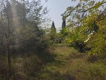 فروش زمین اداری و تجاری 4500 متر در نشتارود در شیپور