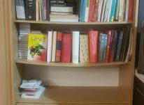 کتابخانه چوبی ایتالیایی در شیپور-عکس کوچک