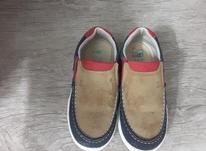 کفش بچگانه در شیپور-عکس کوچک