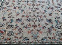فرش گیلدا فیلی/فرش 12 متری/کاف در شیپور-عکس کوچک