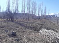 فروش زمین کشاورزی1758 متر در ارجمند وشتان در شیپور-عکس کوچک