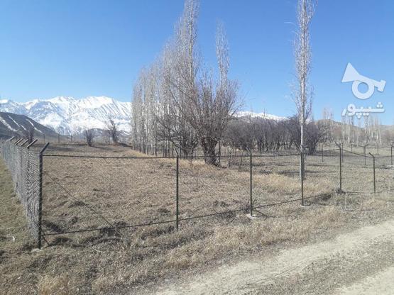 فروش زمین کشاورزی1758 متر در ارجمند وشتان در گروه خرید و فروش املاک در تهران در شیپور-عکس2